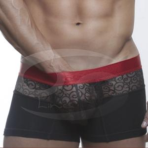 Boxer con Transparencia Completa